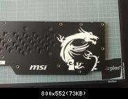 Backplate Dragon Blanc