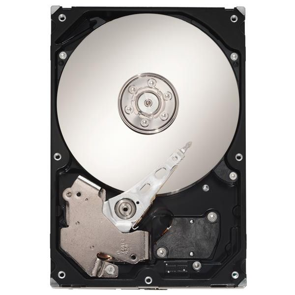 Seagate Barracuda 7200.10 250Go (ST3250820AS)