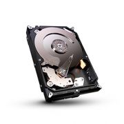 Seagate 7200.14 2To (ST2000DM001)