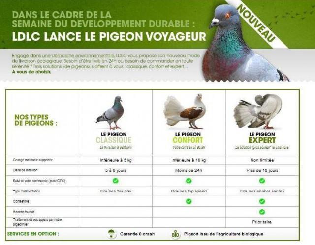 Du nouveau chez HONE - Page 2 Ldlc-livraison-pigeon-voyageur