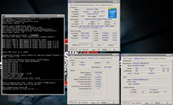 cowcotland wizerty oc lee retour moscou qualification aooc 2014