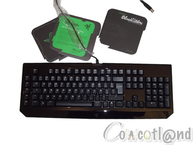 clavier m canique razer blackwidow introduction page 1. Black Bedroom Furniture Sets. Home Design Ideas