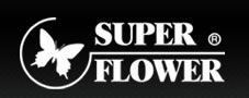 Test Super Flower Golden Silent 500 watts Fanless